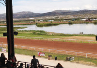 Wyoming Downs Featured